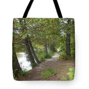 Leaning Trees Tote Bag