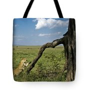 Leaping Lion Tote Bag