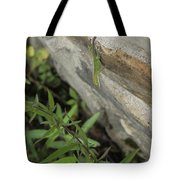 Leaping Lizard Tote Bag