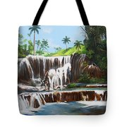 Leaping Waterfall Tote Bag
