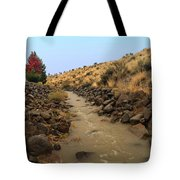 Learn To Swim, Creek Bed Quickly Filling With Water During Autumn Rainstorms In The High Desert Tote Bag