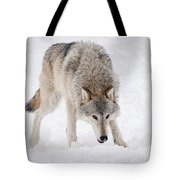 Leary Wolf Style Tote Bag