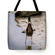Least Bittern With A Fish Tote Bag