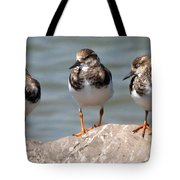 Least Sandpipers Tote Bag