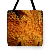 Leather Coral Tote Bag