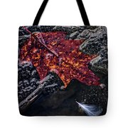 Leave Frozen In Time Tote Bag