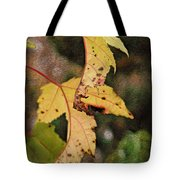 Leaves And Autumn Tote Bag