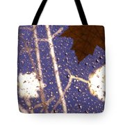 Leaves And Rain 2 Tote Bag