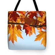 Leaves Autumn Orange Sunlit Fall Leaves Blue Sky Baslee Troutman Tote Bag