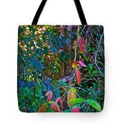 Leaves Changing Color As Autumn Approaches In Iguazu Falls National Park-argentina   Tote Bag