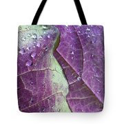 Leaves, Color,  And Dew Tote Bag