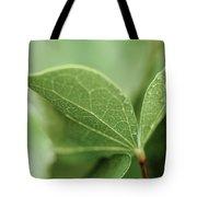 Leaves, Fresh Tote Bag