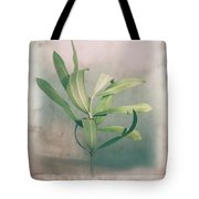 Leaves In Frame Tote Bag