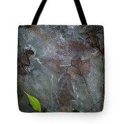 Leaves In Ice At Upper Creek Falls Tote Bag