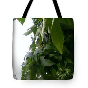 Leaves In Memorial Tote Bag