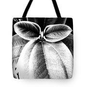 Leaves No. 36 Tote Bag