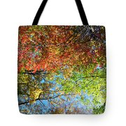 Leaves Of All Colors Tote Bag