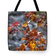 Leaves Of Fall  Tote Bag