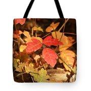 Leaves Of Three Tote Bag