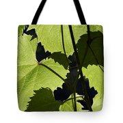 Leaves Of Wine Grape Tote Bag by Michal Boubin