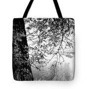 Leaves Over The River Tote Bag