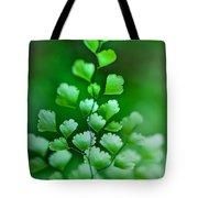 Leaves Rising Tote Bag