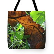 Leaves Still Tote Bag
