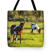 Leaving The Chincoteague Ponies Tote Bag