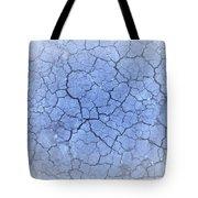 Lednice Tote Bag