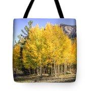 Lee Canyon Aspen Tote Bag