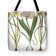 Leek And Irises, 1613 Tote Bag