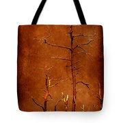 Left Bare And Broken Tote Bag