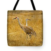 Left Or Right Tote Bag