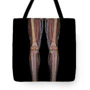 Leg Blood Supply Tote Bag