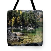 Leigh Lake Cove Tote Bag