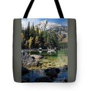 Leigh Lake Cove Tote Bag