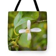 Lemon Blossoms 1 Tote Bag