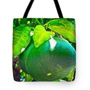 Lemon Or Lime Tote Bag