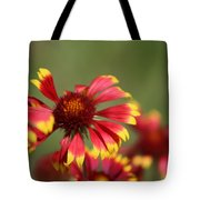 Lemon Yellow And Candy Apple Red Coneflower Tote Bag