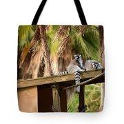 Lemur Couple Tote Bag