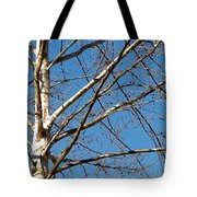 Lenox Sky Tote Bag