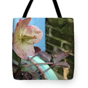 Lenten Rose After An April Shower Tote Bag