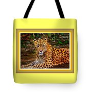 Leopard Beauty Catus 1 No. 1 L A With Decorative Ornate Printed Frame Tote Bag