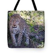 Leopard Front Tote Bag