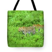 Leopard On The Move Tote Bag