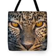 Leopard Panthera Pardus, Ndutu Tote Bag
