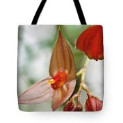 Lepanthes Maduroi Orchid Tote Bag