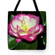 Leslie Ann - Sasanqua Camellia 006 Tote Bag