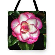 Leslie Ann - Sasanqua Camellia 007 Tote Bag