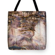 Leslie Gulch Cliff Vertical Tote Bag